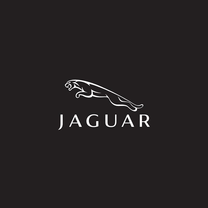 jaguar_copertina